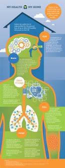 My Health Body Infographic